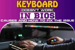 Keyboard Doesn't Work in BIOS...